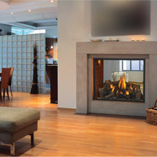 Modern Indoor Fireplaces by Napoleon Fireplaces