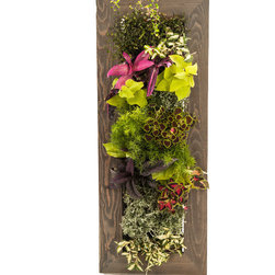 Tall Grovert Ghostwood Planter - Grow your own lush wall garden with one of GroVert's stunning wooden frames! Each GroVert kit is assembled in six simple steps, making GroVert an effortless way to add greenery to your walls! Watering is simple and clean and keeps your walls dry.