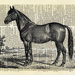 Altered Artichoke - Handsome Horse Dictionary Art Print, Black - This print features an antique illustration of handsome horse. Perfect for any room's decor!