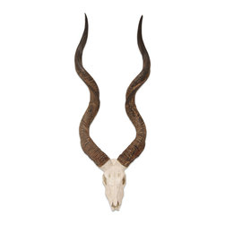 Palecek - Kudu Wall Horns - African Kudu style horns stone cast with hand-painted details. Metal hanger onthe back for mounting.