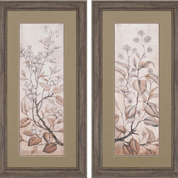 Paragon Decor - Blossoms Set of 2 Artwork - Giclees in muted shades of brown render understated refinement.  Framed in rustic molding.