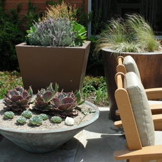 Contemporary Outdoor Planters by A J Miller Landscape Architecture PLLC