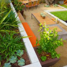 Modern  manicured backyard