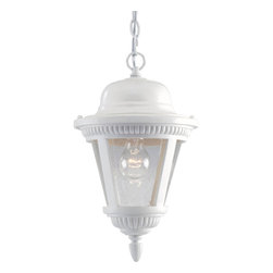 Progress Lighting - Progress Lighting P5530-30 One-Light Hanging Lantern With Clear Seeded Glass - One-light cast hanging lantern with clear seeded glass.