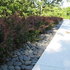 Contemporary Landscape by Landscape Renovations Inc.