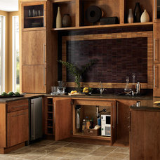 Traditional Small Kitchen Appliances by Everpure Residential (by Pentair)