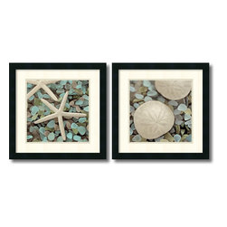 Amanti Art - Alan Blaustein 'Aquatic- set of 2' Framed Art Print 18 x 18-inch Each - Add coastal flair to your decor with this sharp seashell study over seaglass set by photographer Alan Blaustein.