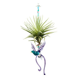 Spirit Pieces - Tillandsia Air Plant with Murano Glass Lyrebird- A Great Avian Home Decor Item - A lovely addition to any inside or outside local, this Tillandsia air plant comes with a beautiful hand-made glass glass Lyrebird and is accented with crystal beads.  This is the perfect gift for anyone who likes plants.  Hang it in the kitchen window or for bedroom decor.  Mist daily.  Makes a perfect bird themed gift.