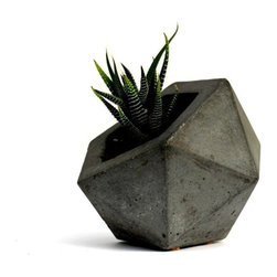 Rough Fusion - Geodesic Planter, Dark Gray - This geometrically modern modern planter is perfect for a display of succulents and adds interest to any centerpiece or table setting.