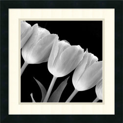 Amanti Art - Tulip Line Framed Print - With its dark background, geometric stems and billowing white petals, the tulips in this image is a marriage of contrasts.