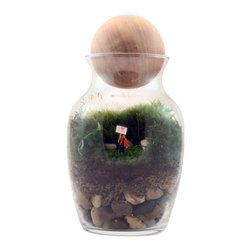 Twig Terrariums - Gentle Reminder Male - In case you don't say it often enough, or you take a lot of business trips, the Gentle Reminder Terrarium featuring a tiny figurine holding a brazen I Love You sign can do it for you, albeit it in a novel, otherworldly way.  Male or female options available.  Figures may vary, but we promise they're all adorable.