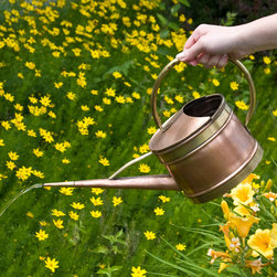 Small Oval Hammered Copper Watering Can - Handcrafted of solid copper, this Small Oval Hammered Copper Watering Can features Aged Brass accents and is perfect for watering indoor plants or flower beds.