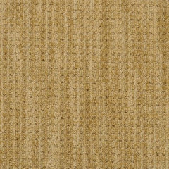 contemporary carpet flooring by Hemphill's Rugs & Carpets