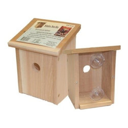 Nest View Bird House - Add some education to your home with the Nest View Bird House. With a clear Plexiglas back panel and suction cup mounting system this bird house can be placed on a glass window allowing your children to watch the nesting process of birds. It measures 5.5L x 6.5W x 8H inches and is constructed of strong cedar wood.