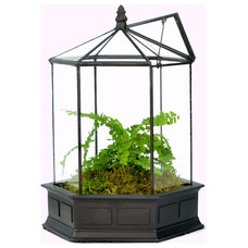 Traditional Terrariums by H Potter