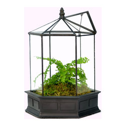 H Potter - H Potter Six Sided Terrarium - You and your gardener friends will be buzzing about this sweet terrarium. With a cast resin base, a hinged roof vent and metal and glass sides and top in a honeycomb shape, it will help your fairy garden fancies take flight. Plant some clover for good measure.