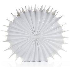 urchin-vase-20-120988480.jpg