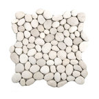 """Glass Tile Oasis - White River Stone Pebbles & Stones White River Rock Tiles Tumbled Natural Stone - Sheet size:  Approx 1 Sq. Ft.     Tiles per sheet:  70     Tile thickness:  1/2""""      Grout Joints:  1/8""""     Sheet Mount:  Mesh Backed     Stone tiles have natural variations therefore color may vary between sheets.   Sold by the sheet    - The beauty of natural stone pebbles  with the convenience of mesh-backed tile! These beautiful stones are available with a natural surface or with a glazed finish. Sheets are curved on all four sides  allowing them to fit together to produce a seamless surface area."""