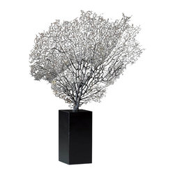 Cyan Design - Coral Sea Fan Sculpture, Natural - The 100% authentic Coral Sea Fan Sculpture adds authenticity and sophistication to the most discriminating room design.  Sustainably harvested from warm ocean waters, the feathery web of natural coral formation sits atop a sturdy black base (included).  The Coral Sea Fan Sculpture is perfect for adding warmth and texture to contemporary decor.  Choose from natural gray coral or red coral for a luxurious, well traveled look in your home or office.