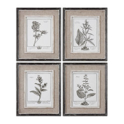 Uttermost - Casual Grey Study Framed Art Set/4 - Botanical prints are a great way to spruce up a boring wall space. The neutral tones won't compete with your furniture and these look expensive with  their distressed frames, liners and burlap mats.