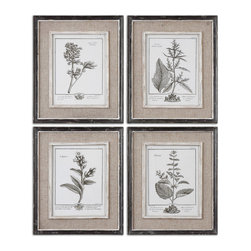 Uttermost - Casual Grey Study Framed Art Set of 4 - Botanical prints are a great way to spruce up a boring wall space. The neutral tones won't compete with your furniture and these look expensive with  their distressed frames, liners and burlap mats.