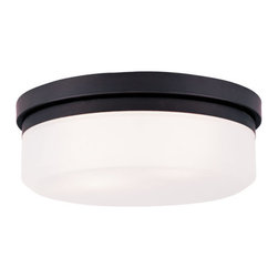 "Livex Lighting - Livex Lighting 7392 13 Inch Wide Flush Mount Ceiling Fixture / Wall Sconce with - Livex Lighting 7392 Two Light Flush Mount Ceiling FixtureA modern take on warehouse style lighting, the Westfield 13"" diameter two light flush mount ceiling fixture features a round hand blown glass shade and a simple metal base. Install on the ceiling or wall and add an industrial chic feel to your home today!Livex Lighting 7392 Features:"