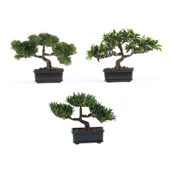 "Covered In Style Inc - 12"" Bonsai Silk Plant Collection (Set of 3) - In Japan, the purpose of bonsai is for contemplation by the viewer and effort and ingenuity by the grower. Bring a little of that sense of peace to your home with a set of these lifelike trees. But be ready for people to ask you where you learned to prune like a pro."