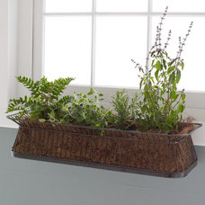 Contemporary Indoor Pots And Planters by West Elm