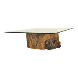 Hollow Trunk Coffee Table - Square Glass Top - Coffee table base made of a hollow trunk from a tree that died naturally. It is the result of a natural process, which sometimes is started by a fungi or insect intrusion through a broken branch. After being attacked, a tree may still live for many years, even decades, until it becomes completely hollowed out inside. One-of-a-kind item.