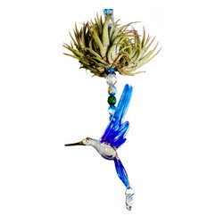 Tillandsia Spirit Pieces - The perfect decoration for any window or table, this Air Plant home decor accent piece needs daily mistings and/or a weekly dunking.   Perfect for a home office or bedroom window.  A great housewarming gift!