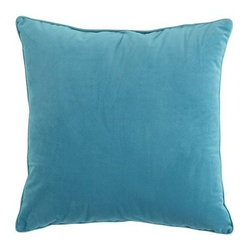 Turquoise Plush Pillow
