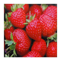 Oriental Furniture - Strawberries Canvas Wall Art - Sharp, gallery quality print of ripe strawberries. High quality ink jet printing captures the vibrant natural hue of these picture-perfect berries. Large wall decor, perfect for the kitchen, dining room, or breakfast nook, offered at an affordable price.