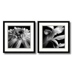 Amanti Art - Darlene Shiels 'Gerbera & Iris- set of 2' Framed Art Print 17 x 17-inch Each - Delicate Iris and Gerbera flower petals are captured in luxurious detail in this arresting framed art set by Darlene Shiels.