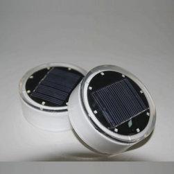 Solar Cynergy   HCL Solar LED Accent Light -