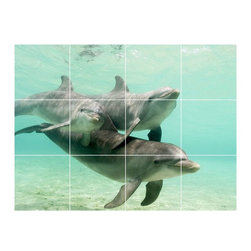 Picture-Tiles, LLC - Dolphin Photo Bathroom Shower Tile Mural  36 x 48 - * Dolphin Photo Bathroom Shower Tile Mural 1450