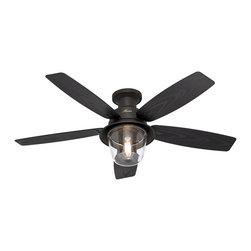 Hunter Allegheny 52-Inch New Bronze Outdoor Flush-Mount Ceiling Fan - I like the modern style and lighting unit of this fan.