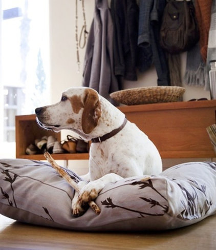 Contemporary Dog Beds by Design Public