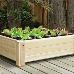 traditional outdoor planters by Wayfair