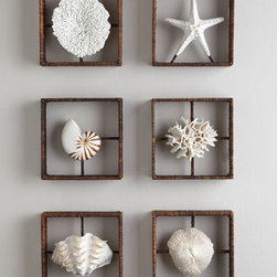 Faux Coral Shadowboxes -