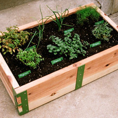 contemporary outdoor planters by Scout Regalia