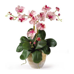 Triple Mini Phalenopsis Silk Orchid Arrangement - Three times the splendor - that's our 20'' Triple Mini Phalaenopsis Silk Orchid Plant! It's perfect for smaller shelves or areas where our taller silk arrangements won't fit, yet it offers all of the same features such as three stems of full-blooming silk flowers and buds, bamboo stakes to support the stems, and plenty of lush foliage and aerial roots. It comes expertly arranged in a lovely ceramic pot, ready for display. Height= 20 in x Width= 11 in x Depth= 11 in