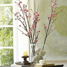 contemporary plants by Pottery Barn