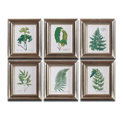 Uttermost - Ferns Framed Art Set of 6 - Prints Are Accented By Frames With A Champagne Silver Leaf Base, Brown And Black Wash And Gray Glaze. Prints Are Under Glass.