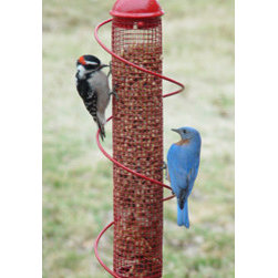 Songbird Essentials - Red Peanut Feeder - 17.5 in. Red Peanut spiral feeder. Consumers and birds love patented songbird essentials bird quest spiral feeders! More ports means more birds. Birds love to run the spiral instead of flying to another perch.