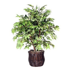 4 ft. Extra Full Tree American Elm / Rattan - About VickermanThis product is proudly made by Vickerman, a leader in high quality holiday decor. Founded in 1940, the Vickerman Company has established itself as an innovative company dedicated to exceeding the expectations of their customers. With a wide variety of remarkably realistic looking foliage, greenery and beautiful trees, Vickerman is a name you can trust for helping you create beloved holiday memories year after year.