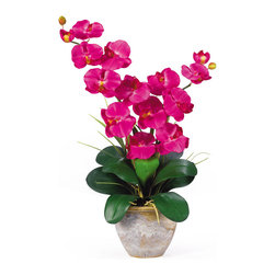 Nearly Natural - Double Stem Phalaenopsis Silk Orchid Arrangement - This 25 inch double stem phalaenopsis silk orchid plant is nothing short of an explosion of color. Expertly arranged, this piece was designed to enhance any space. Each plant comes stacked with two amazing phalaenopsis stems each with 6 flowers and 2 buds. Finished with a gorgeous glazed ceramic vase this item is not to be missed. So whether you're looking for a gift or just want to perfect your decor...you're only one click away. Color: Beauty, Height: 25', Vase: H 5-1/2' W 7'