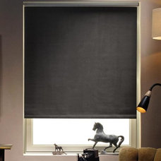 Contemporary Roller Shades by Blinds.com
