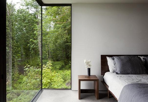 Modern Windows by Quantum Windows & Doors, Inc.