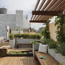 Modern Landscape by pulltab design