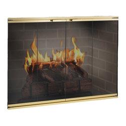Elite Aluminum Fireplace Glass Door - Custom Product -